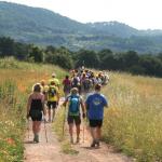 World Francigena Ultramarathon